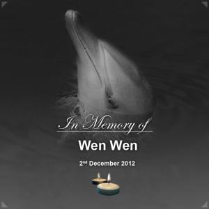 wen-wen